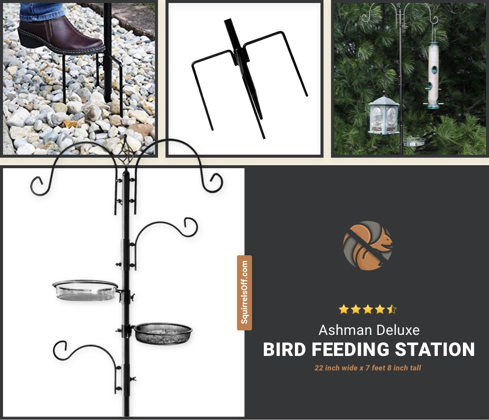 Ashman Deluxe Bird Feeding Station