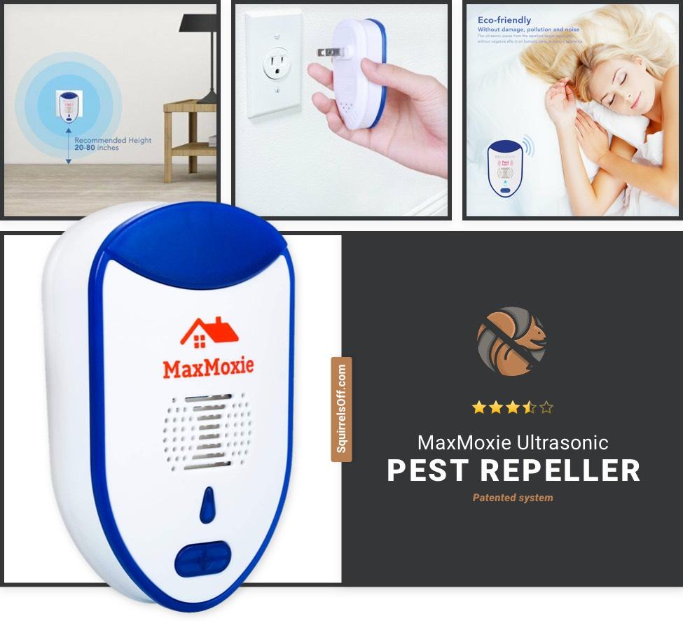 Best Ultrasonic Repellent